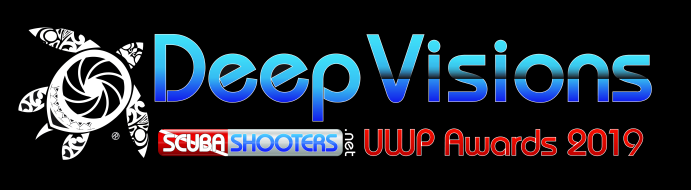 Deep Visions Contest